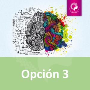 OPCIÓN 3 DE PAGO